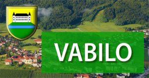 vabilo2041 300x158 - OBČINA PREBOLD: Dan odprtih vrat Občine Prebold